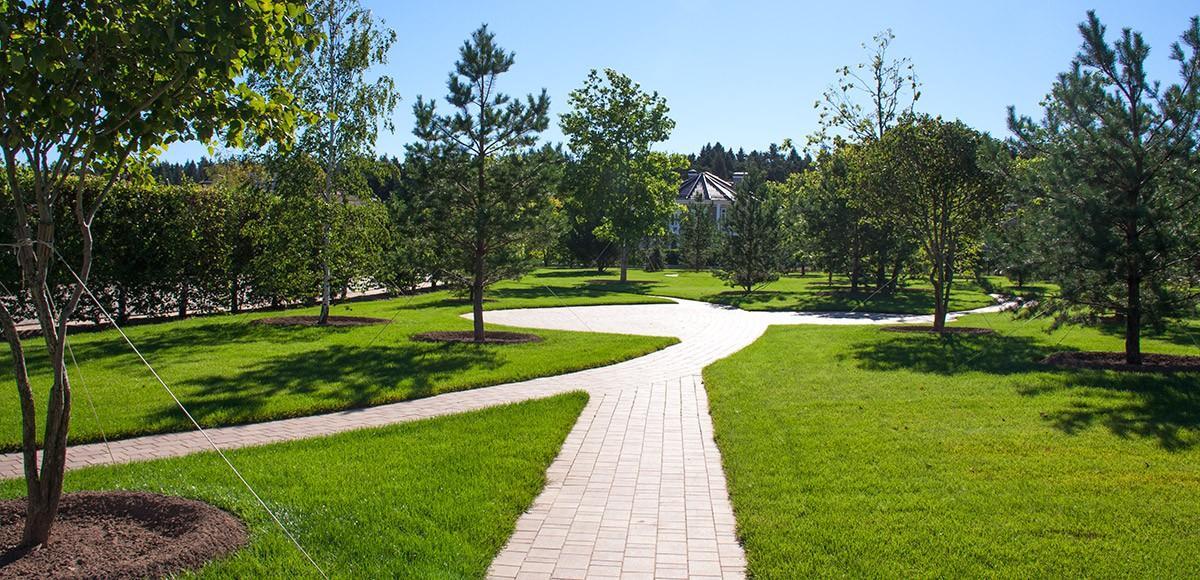 Дорожки для прогулок, КП Ренесанс Парк