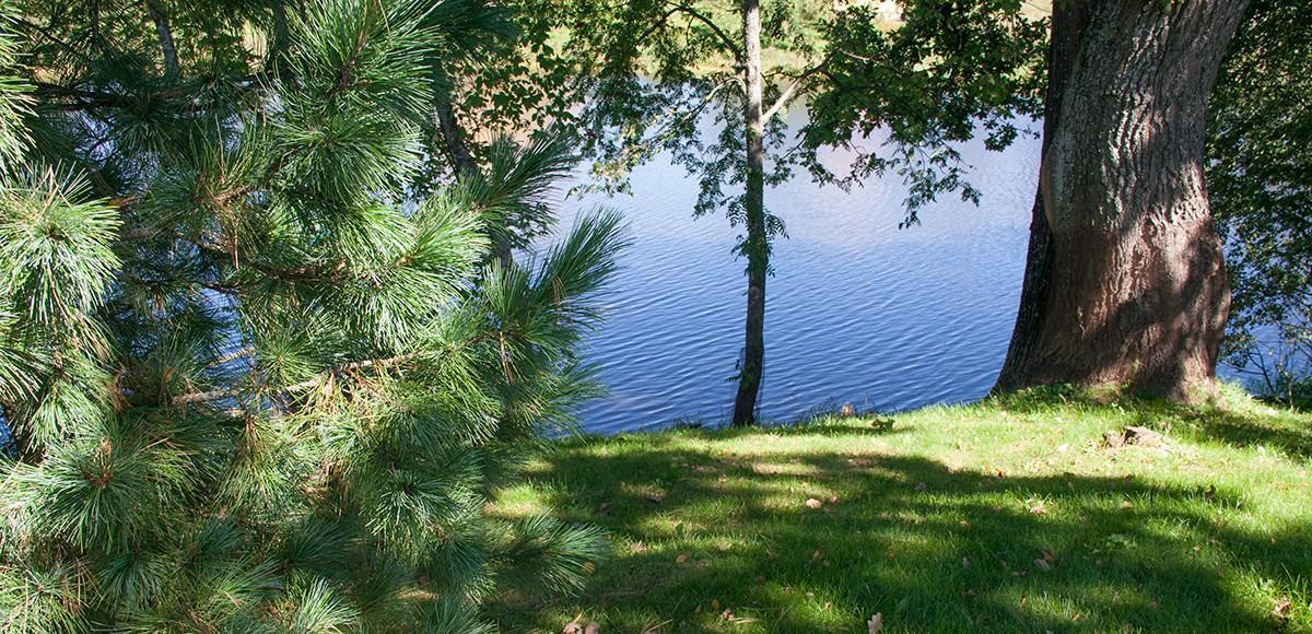Река Беляна, поселок Риверсайд на Новой Риге