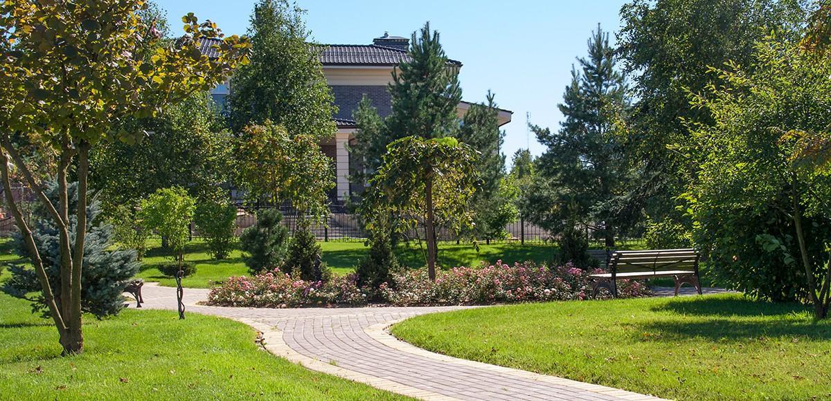 Розы в парке у озера, КП Madison Park