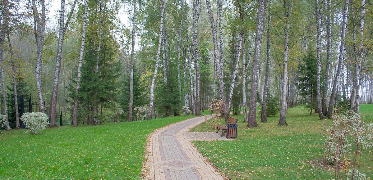 Обустроенная прогулочная зона в лесу, КП Монтевиль