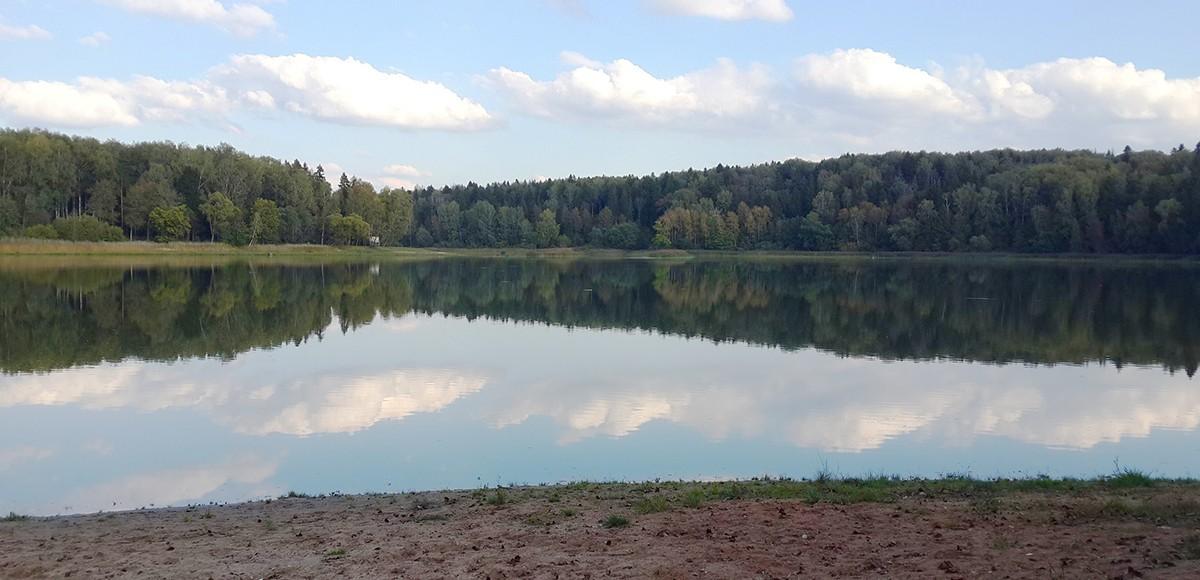 Берег Истринского водохранилища рядом с Усадьба Миронцево