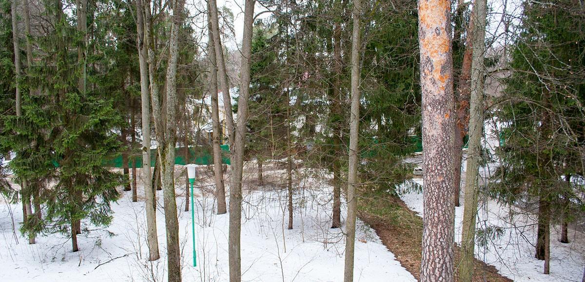 Вид с балкона квартиры 9, поселок Усово